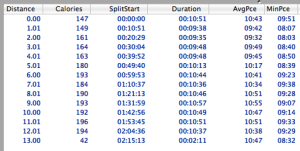 Lap data showing average running pace at each mile